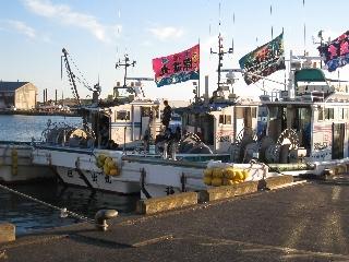 桜えび漁出航